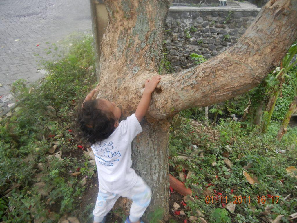 Elak Marah Anak Kalau Anak Suka Memanjat Memanjat Satu